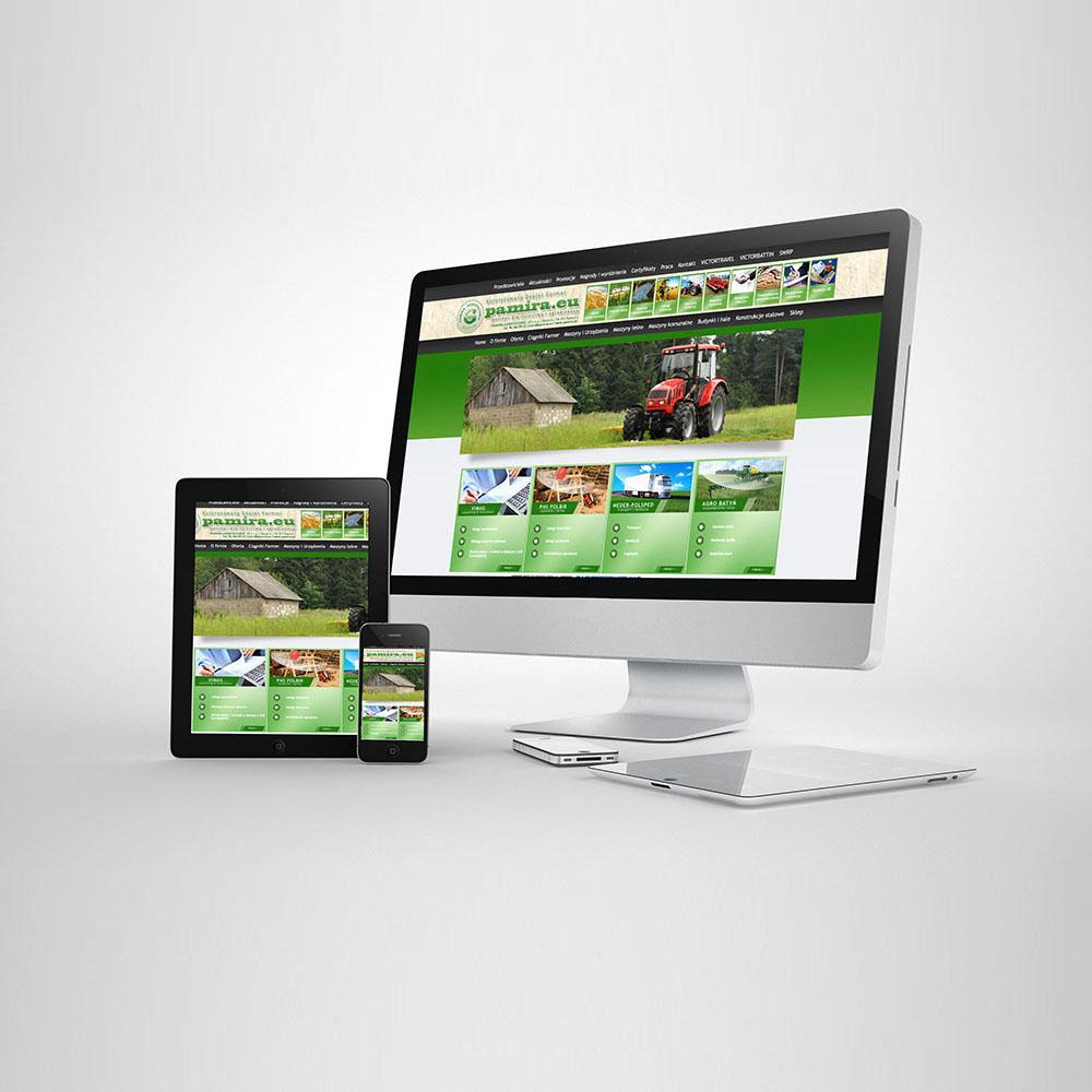 Leszno projekty www